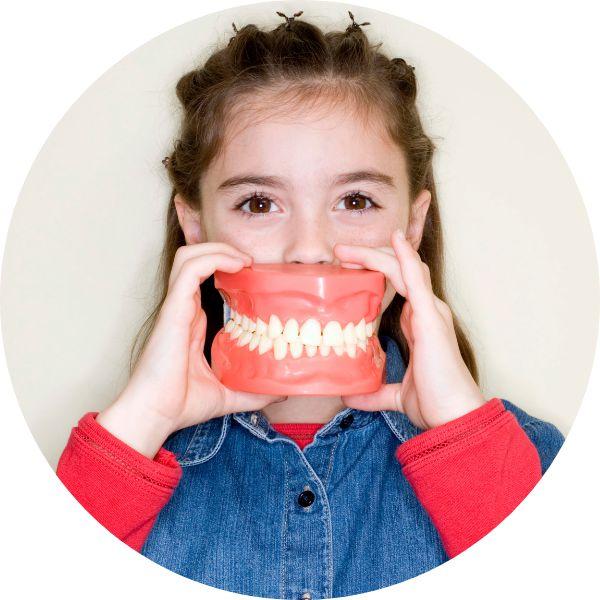 Семейный стоматолог – стоматология без стресса и слез